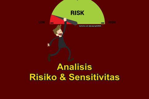Analisis Risiko dan Sensitivitas