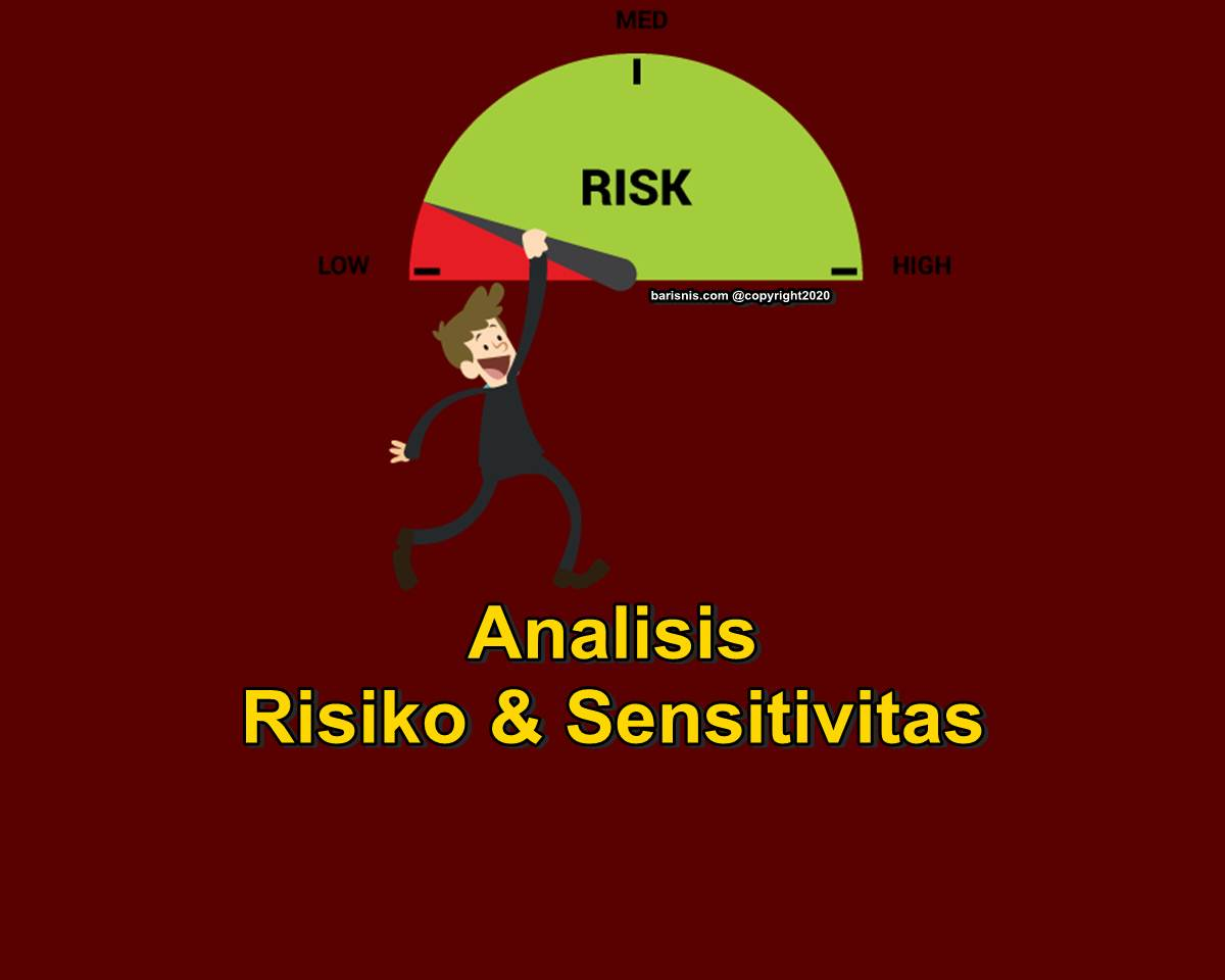 Analisis Risiko dan Sensitivitas